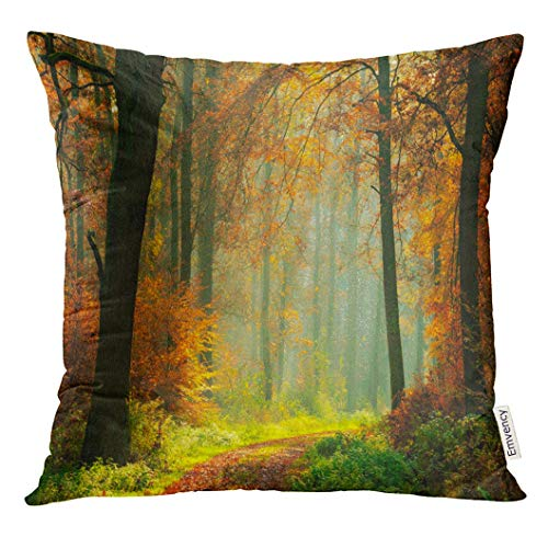 Throw Pillow Cover Green Fall Footpath Through Foggy Forest in Autumn Illuminated by Sunbeams Sunlight Decorative Pillow Case Home Decor Square 18x18 Inches Pillowcase (Sunbeam Wasser)