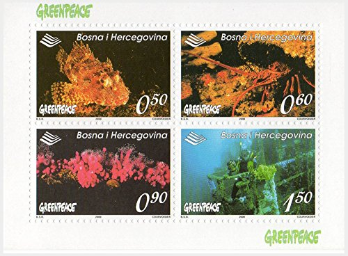 greenpeace-briefmarken-fur-sammler-fauna-der-ozeane-block-4-marken-in-2000-michel-nr-block-9-mint