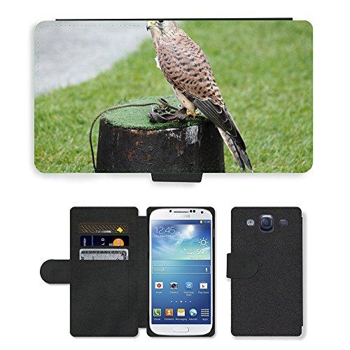 GoGoMobile PU LEDER LEATHER FLIP CASE COVER HÜLLE ETUI TASCHE SCHALE // M00117592 Turmfalke Falco tinnunculus Falcon // Samsung Galaxy S3 S III SIII i9300 (Leder Falchi)