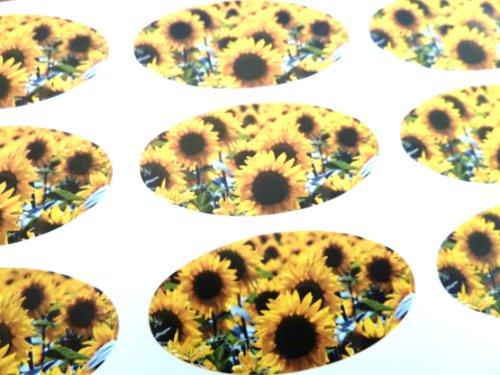 Packung mit 30, Sonnenblume, 51 x 25 mm ovale Weihnachtsaufkleber, Aufkleber für Geschenkverpackungen, Geschenke, Umschlag, in englischer Sprache