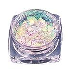 Xshuai Fashion Design natürliche Glitzer Aluminium Flakes Magic Mirror Effektpulver Sequins Nail (B)