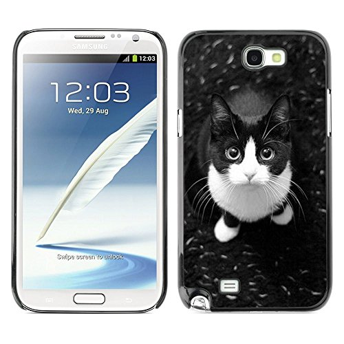 Plastic Shell Protective Case Cover    Samsung Galaxy Note 2 N7100    Shorthair Housecat Cat @XPTECH (Samsung Galaxy Stellar Hard Case)