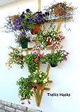 "Trellis Hooks, 6 plant pot holders to hang 6""plant pots on a trellis."