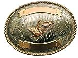Gürtelschnalle graviert mit Bull Rider