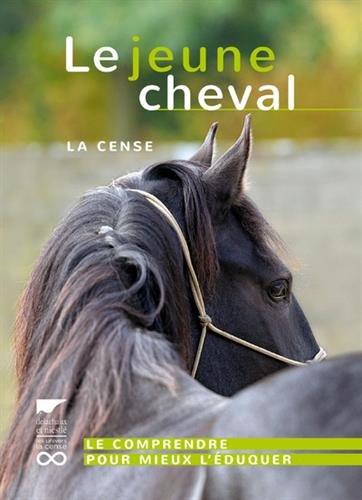 Le jeune cheval - La Cense par Haras de la cense