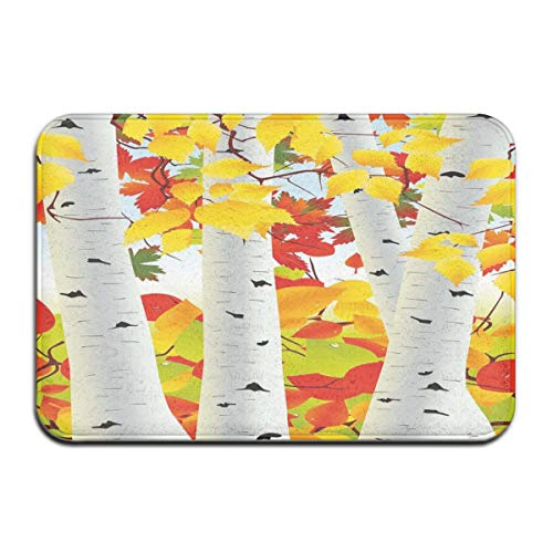 Bath Rugs and Mats,Autumn Scene with Orange Fallen Leaves Dying Nature Cycle of Life Theme,Plush Decor Mat Non Slip Backing,19.5 * 31.5 inch