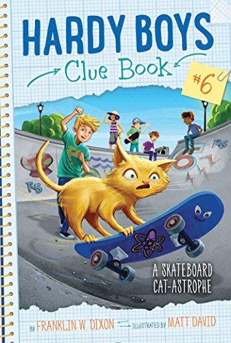 a-skateboard-cat-astrophe