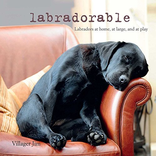 Labradorable: Labradors at home, at large, and at play by Villager Jim (2015-09-10)