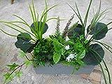 künstliches Pflanzen Set, C
