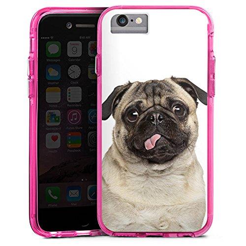 Apple iPhone 7 Plus Bumper Hülle Bumper Case Glitzer Hülle Mops Welpe Chien Bumper Case transparent pink