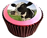 Cow #edible cake toppers (12 of 38mm 1.5inch) #80