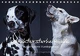 charakterstarke Hunde, wunderschöne Hundeportraits (Tischkalender 2019 DIN A5 quer): Hundeportraits im Doppelpack (Monatskalender, 14 Seiten ) (CALVENDO Tiere)
