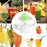 Mini Standmixer, Nourich Elektrische Smoothie Maker, Standmixer, 400ML Flaschen, Multifunktion Smoothiemaker Juicer Mini Blender Persönlicher Mixer Orangenfrucht Extractor Saftpresse...