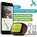 Kippy Vita - Localizador GPS para Perros y Gatos con Monitor de Actividad - Green Eye