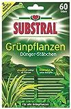 Substral Dünger-Stäbchen für Grünpflanzen - 60 Stück