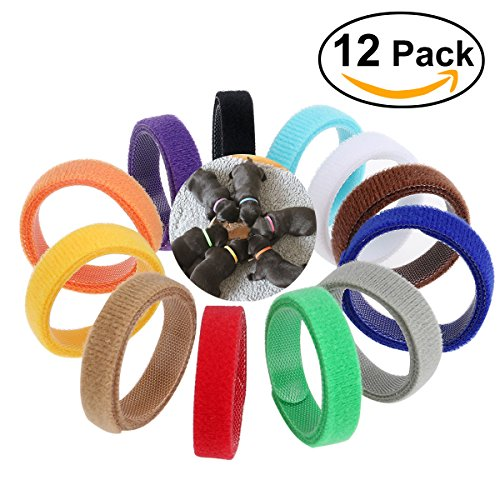 nuolux-collier-chiot-12-couleurs-collier-id-didentification-reglable-ruban-auto-adhesif-pour-chiot