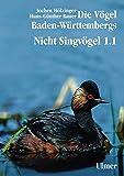 Die Vögel Baden-Württembergs Band 2.0 - Nicht-Singvögel1.1, Nandus bis Flamingos - Jochen Hölzinger, Hans-Günther Bauer