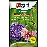 CLORVERDE plus verde correctivo de 100 gramos (5 sobres de 20 gramos)