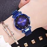 Orologio femminile di temperamento alla moda e semplice che vibra con lo stesso modello di orologio con stella magnetica Fiamma - blu - cintura a rete