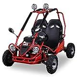 Mini Niños eléctrico Buggy 450W 6pulgadas 2niveles de acelerador Offroad infantil Buggy