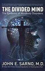 The Divided Mind: The Epidemic of Mindbody Disorders by John E. Sarno (2008-05-01)