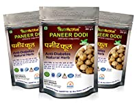 NutrActive Paneer DODI | Indian Rennet | Paneer Doda | Paneer Ka Phool | Withania Coagulans | Anti-Diabetic (600GM)