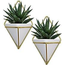 Kurtzy Macetas colgantes para plantas - 2 Macetas Geométricas Decorativas para plantas suculentas, tillandsias,