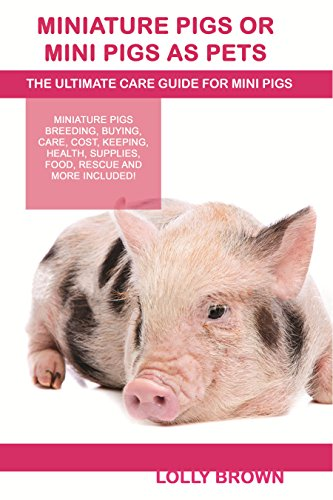 Miniature Pigs Or Mini Pigs as Pets: Miniature Pigs Breeding, Buying, Care, Cost, Keeping, Health, Supplies, Food, Rescue and More Included! The Ultimate Care Guide for Mini Pigs (English Edition) (Miniature Pig Pet)
