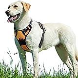 Hundegeschirr keine Pull Verstellbare gepolsterte vorne Serie Puppy Weste Geschirre mit Griff Reflektierende Atmungsaktive Weiche Mesh Leichte Outdoor Adventure Training Walking Comfort Control