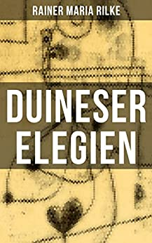 Duineser Elegien: Elegische Suche nach Sinn des Lebens und Zusammenhang