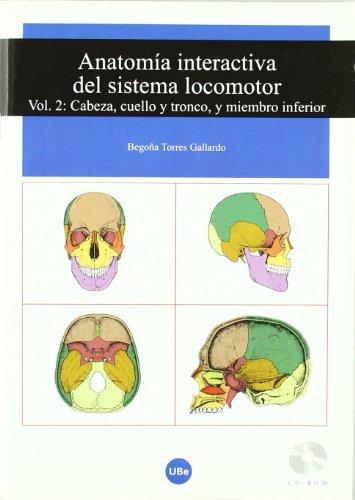 Anatomía interactiva del sistema locomotor. Volumen II: Cabeza, cuello y tronco, y miembro inferior (CD-ROM + Folleto) (UNIVERSITAT) por Begoña Torres Gallardo