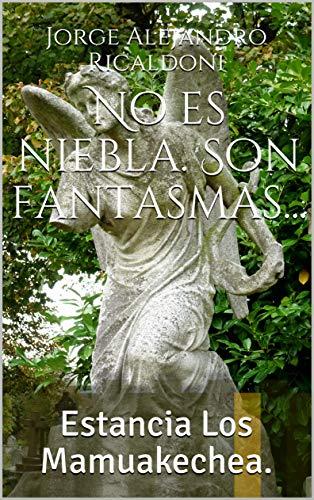 No es niebla. Son fantasmas...: Estancia Los Mamuakechea. (Las historias de Floreal Pomposo) por Jorge Alejandro Ricaldoni