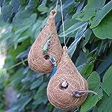 Haastika Handcraft coircraft Bird nest Pack of 2