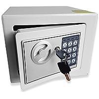 Caja fuerte electrónica, para dinero, de acero, para oficina o uso doméstico, montaje en pared o en el suelo, 23x 17x 17cm (ancho x alto x profundo), de Futura