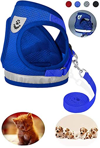 YHEGV Dog Harness Soft Mesh Small Leash-Reflective Verstellbare Weste Harness Reflective Cord Escape Proof Katzengeschirr Leash Walking, Blau, XL