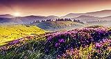 ZZXSY Puzzle 1000 Pezzi Giocattoli Fiore di Montagna Il Puzzle più Popolare per Grandi E Piccini
