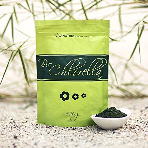 GeoVitalis Bio-Chlorella Pulver, 500g, aus kontrolliert biologischem Anbau, laborgeprüft, Rohkostqualität!