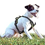 rabbitgoo No-Pull Hundegeschirr für Kleine Hunde Welpengeschirr Einstellbar Weich Geschirr Sicher Kontrolle Brustgeschirr Gepolstert Dog Harness Grün XS
