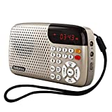 Soundkarte Mini Radio Retro Morgen Phonograph, Digitalanzeige Automatische Abschaltung Eingebauter Lautsprecher Lanyard Bluetooth (Color : Gold)