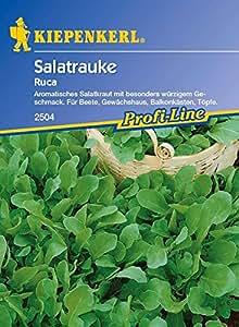 Kiepenkerl Ruca Salatrauke