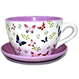 Picture Of Decorative Novelty Terracotta Tea Cup and Saucer Shaped Garden Patio Flower Planter Plant Pot Tub (Large Butterfly Butterflies)