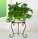 Outdoor Herb Flower Plant Stands European Style Flower Frame Iron Flower Frame Floor Balcony Flower Bed Frame Indoor Living Room Flower Stand Single - Layer Flower Rack Indoor and Outdoor Use Vintage Style ( Color : Gold )