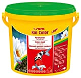 Sera Mangime per Pesci Koi Color Large kg. 1 per Koi di Taglia Grande