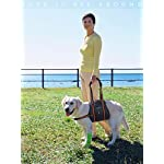 PETBABA Dog Lifting Harness, Lift Support Sling to Help Pet with Weak Back Leg, Aid Mobility and Rehabilitation… 10