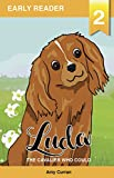 Luda the Cavalier who could (Tales of Tails Book 2)