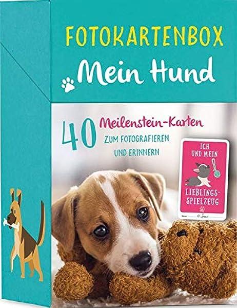 Fotokartenbox Mein Hund 40 Meilenstein Karten Zum Fotografieren