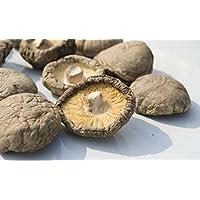 3 libras (1362 gramos) Grado Premium Setas Shiitake secas de Yunnan China