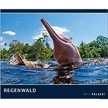 Regenwald 2011: Der grüne Planet - Kunstdruck Kalender
