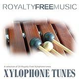 Caribbean Xylophone (Instrumental)