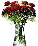 LSA International FW08 Flower Mixed Bouquet Vase H29cm Clear